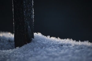 1248381_snow.jpg