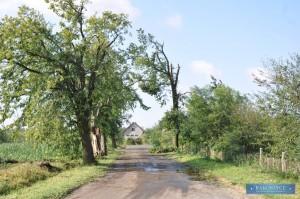 Rakoszyce.pl_DSC_0047